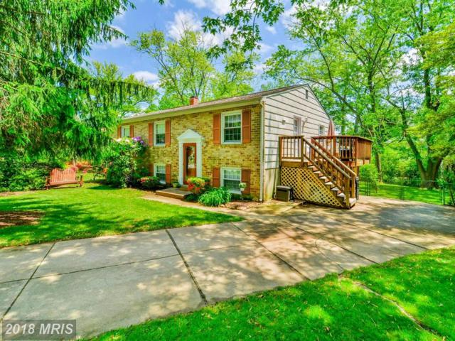 203 Janet Court, Reisterstown, MD 21136 (#BC10228955) :: The MD Home Team
