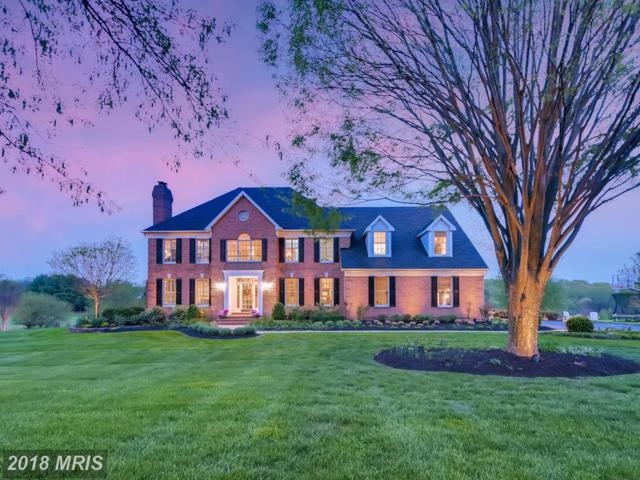31 Lauren Knoll Court, Baldwin, MD 21013 (#BC10231441) :: Town & Country Real Estate