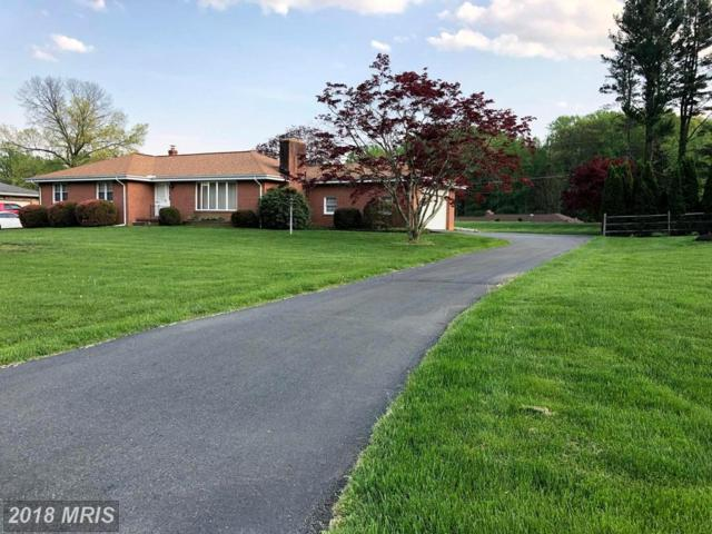 7017 Ruxford Drive, Kingsville, MD 21087 (#BC10238012) :: Advance Realty Bel Air, Inc