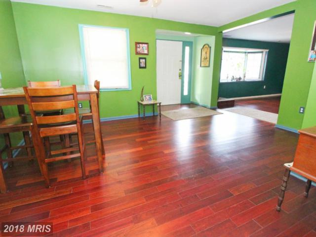8011 Oakleigh Road, Parkville, MD 21234 (#BC10238932) :: The Dailey Group