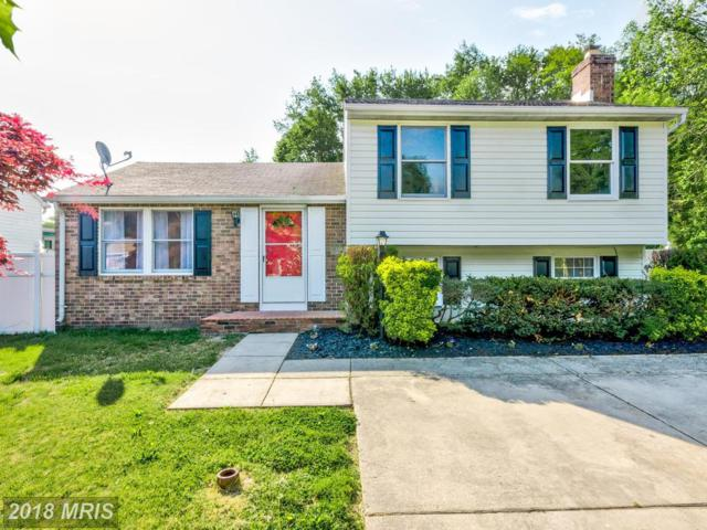 12529 Gracewood Drive, Middle River, MD 21220 (#BC10240331) :: The Dailey Group