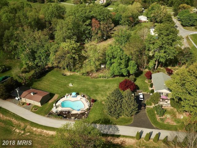 3720 Blenheim Road, Phoenix, MD 21131 (#BC10241508) :: The Withrow Group at Long & Foster