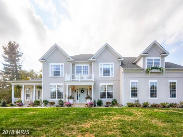 2607-A Chestnut Woods Court, Reisterstown, MD 21136 (#BC10244031) :: Stevenson Residential Group of Keller Williams Excellence