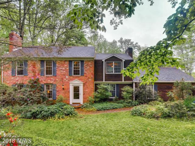 4 Dunscombe Court, Phoenix, MD 21131 (#BC10245090) :: RE/MAX Executives