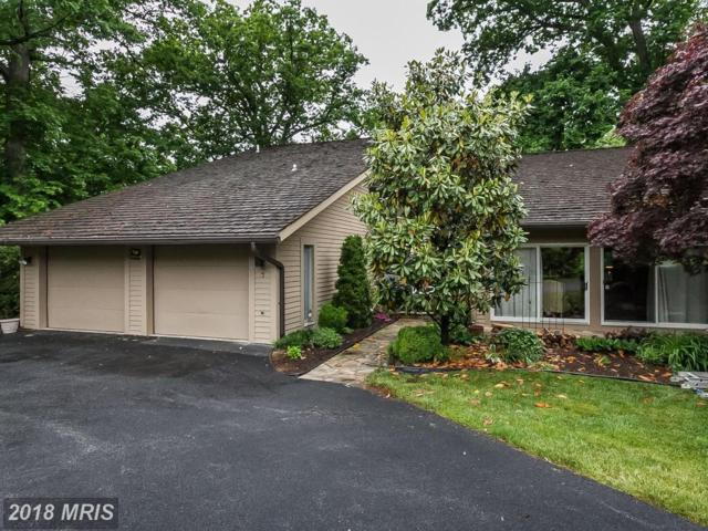 7 Riderwood  Station, Baltimore, MD 21204 (#BC10246545) :: The Sebeck Team of RE/MAX Preferred