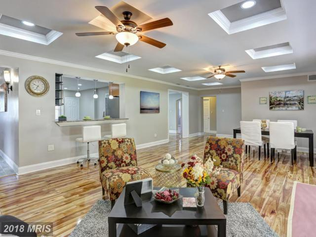 6513 Corkley Road, Baltimore, MD 21237 (#BC10247644) :: The Gus Anthony Team