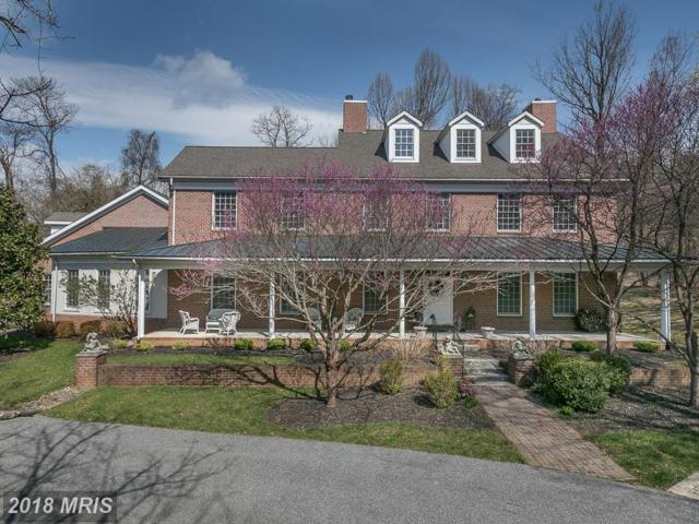22 St Thomas Lane, Stevenson, MD 21153 (#BC10248329) :: Stevenson Residential Group of Keller Williams Excellence