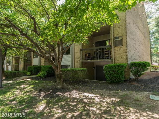 2 Bailiffs Court #102, Lutherville Timonium, MD 21093 (#BC10249339) :: The Dailey Group