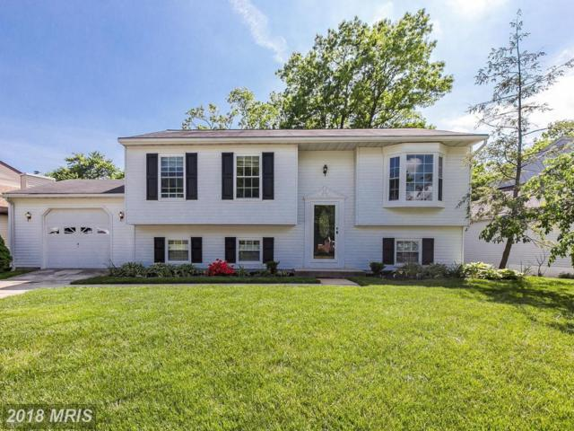5013 Tartan Hill Road, Perry Hall, MD 21128 (#BC10251737) :: The Dailey Group