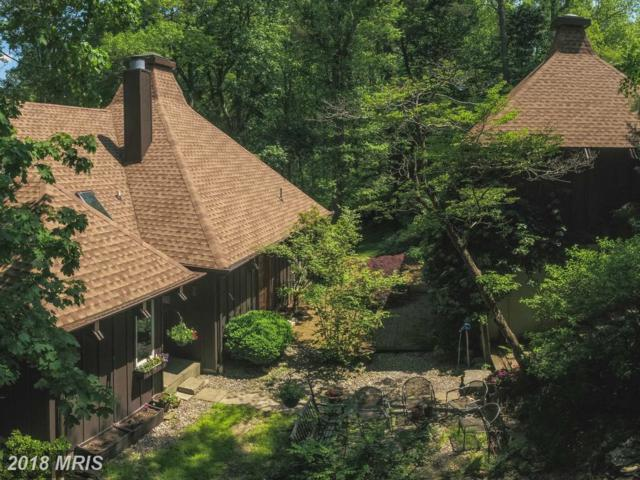16611 Jm Pearce Road, Monkton, MD 21111 (#BC10254311) :: The Gus Anthony Team