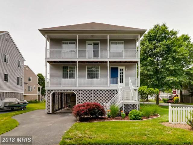 201 Mariners Point Drive, Baltimore, MD 21220 (#BC10265961) :: The Gus Anthony Team