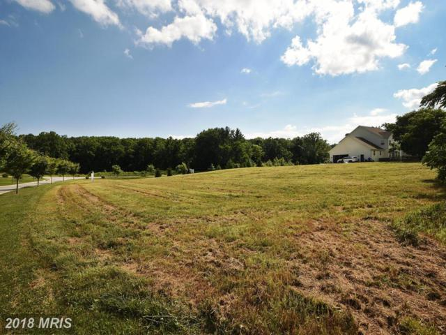 11924 Bluestone Road, Kingsville, MD 21087 (#BC10266916) :: Tessier Real Estate