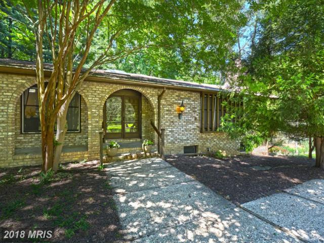 2308 Velvet Ridge Drive, Owings Mills, MD 21117 (#BC10271178) :: The Gus Anthony Team