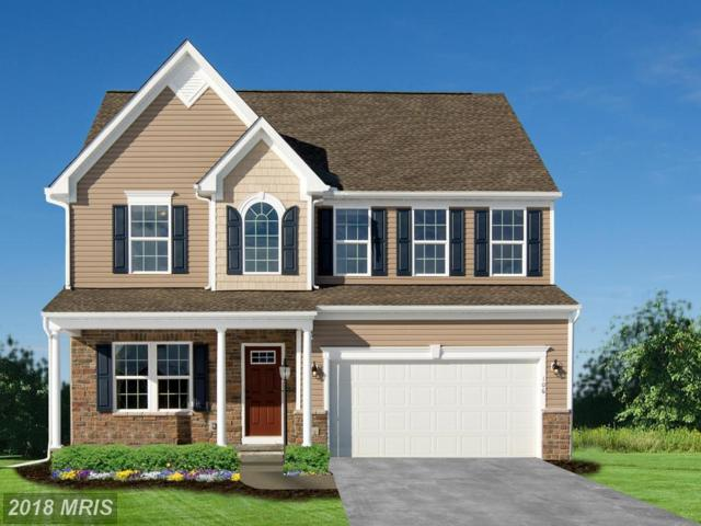 9819 Marsh Haven Court, Middle River, MD 21220 (#BC10271732) :: The Dailey Group