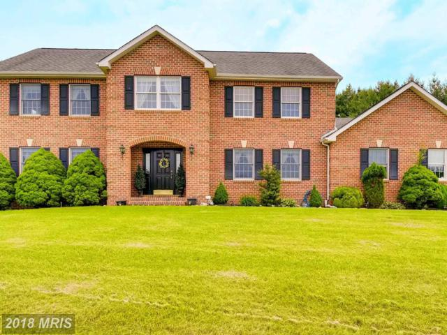 7430 Longfield Drive, Kingsville, MD 21087 (#BC10271974) :: Tessier Real Estate