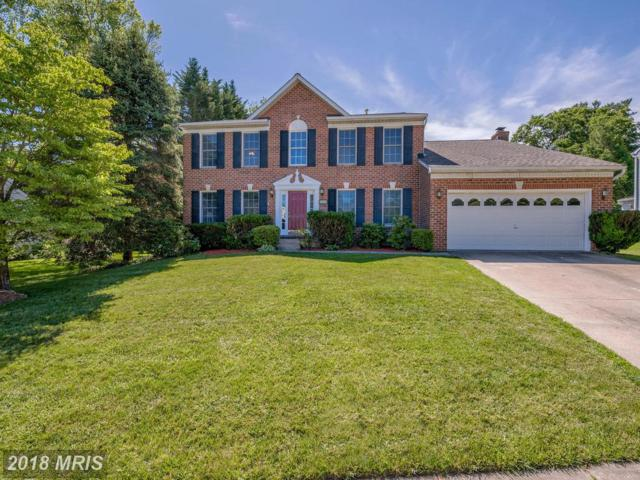 9515 Waltham Woods Road, Parkville, MD 21234 (#BC10272161) :: The Dailey Group