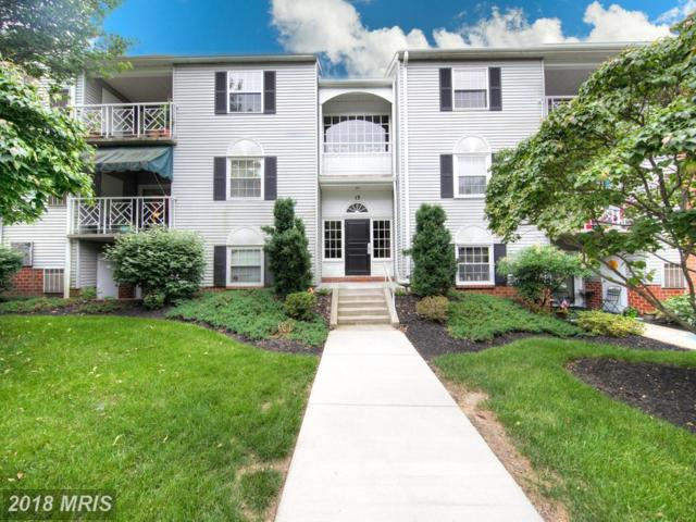 13 Elphin Court #201, Lutherville Timonium, MD 21093 (#BC10278137) :: The Dailey Group