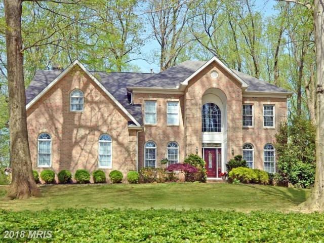 7 Wildon Court, Kingsville, MD 21087 (#BC10281930) :: Advance Realty Bel Air, Inc