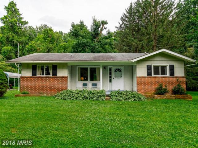 2315 Carroll Mill Road, Phoenix, MD 21131 (#BC10282765) :: Charis Realty Group