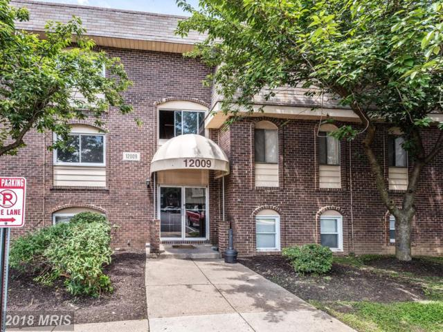 12009 Tarragon Road F, Reisterstown, MD 21136 (#BC10283672) :: Keller Williams Pat Hiban Real Estate Group