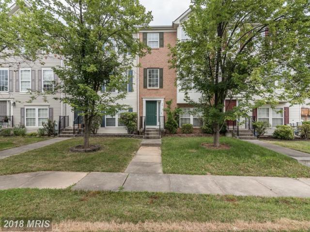 36 Hallsdale Court, Baltimore, MD 21237 (#BC10302682) :: Bob Lucido Team of Keller Williams Integrity