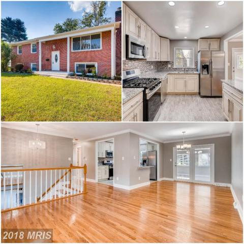 202 Mysticwood Road, Reisterstown, MD 21136 (#BC10303108) :: Frontier Realty Group