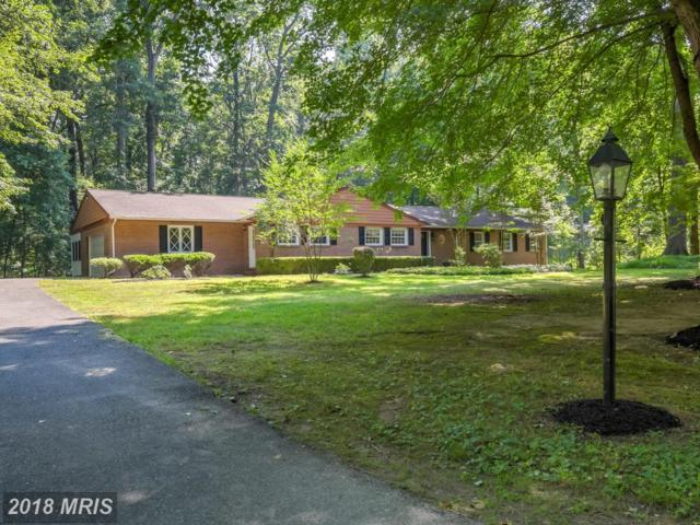 11305 Woodland Drive, Lutherville Timonium, MD 21093 (#BC10303564) :: The Sebeck Team of RE/MAX Preferred