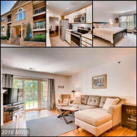 14201 Quail Creek Way #103, Sparks, MD 21152 (#BC10321108) :: Stevenson Residential Group of Keller Williams Excellence