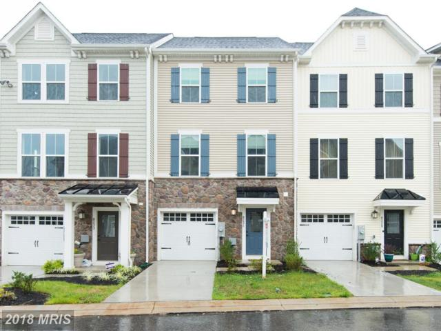 8231 Secluded Cove Lane, Baltimore, MD 21222 (#BC10322982) :: The Dailey Group