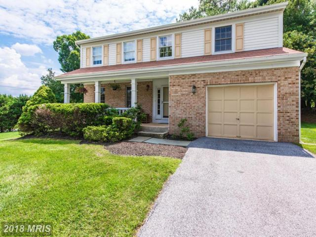 24 Birch Bark Court, Owings Mills, MD 21117 (#BC10323089) :: The Dailey Group