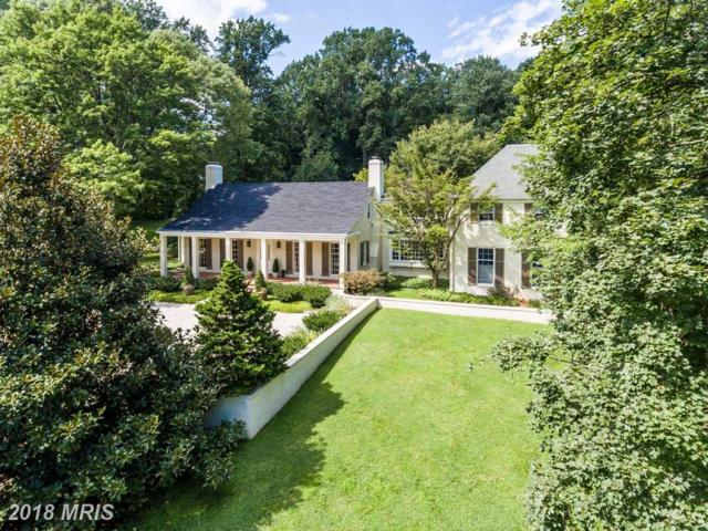 2 Chetwick Court, Owings Mills, MD 21117 (#BC10338486) :: RE/MAX Executives