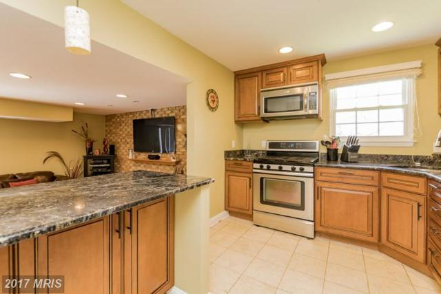 5 Vicky Court, Baltimore, MD 21236 (#BC9915963) :: LoCoMusings