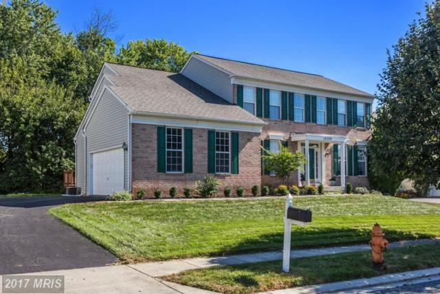 12309 High Stakes Drive, Reisterstown, MD 21136 (#BC9930124) :: LoCoMusings