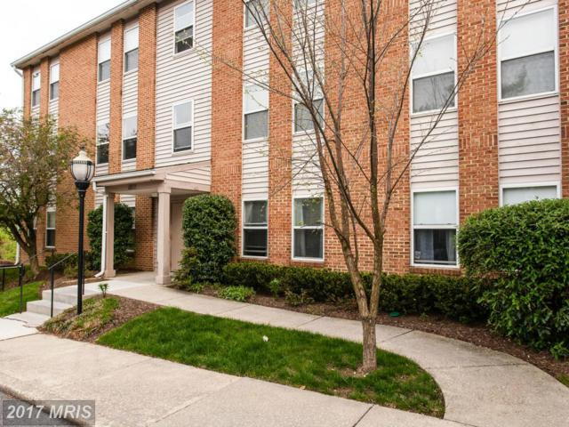 1801 Snow Meadow Lane #201, Baltimore, MD 21209 (#BC9935618) :: Pearson Smith Realty