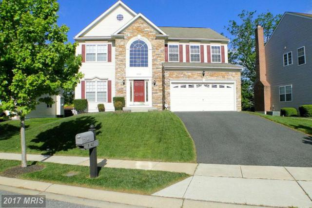 8142 Glen Arbor Drive, Baltimore, MD 21237 (#BC9937115) :: LoCoMusings