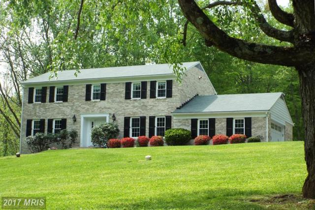 9 Clipping Tree Lane, Cockeysville, MD 21030 (#BC9946485) :: LoCoMusings