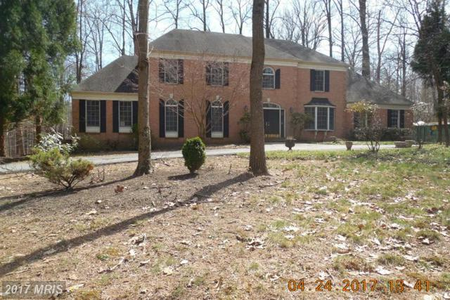 12633 Waterspout Court, Owings Mills, MD 21117 (#BC9954919) :: LoCoMusings