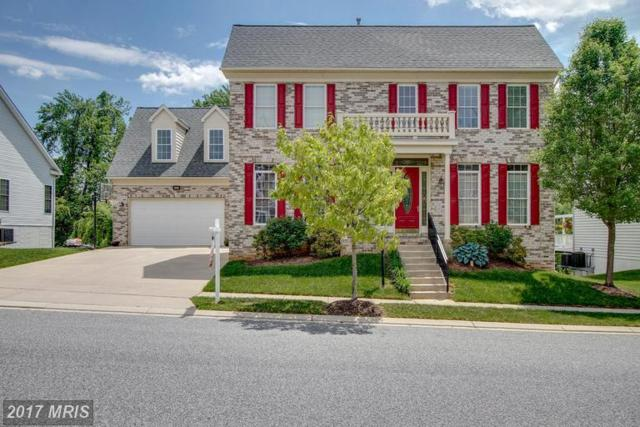 9119 Panorama Drive, Perry Hall, MD 21128 (#BC9957193) :: LoCoMusings