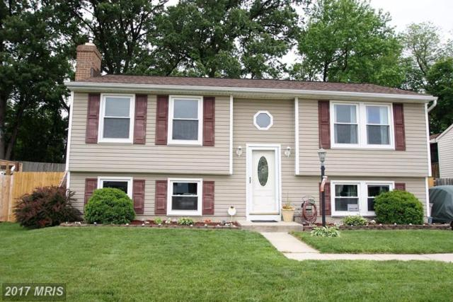 17 Freedom Court, Baltimore, MD 21220 (#BC9958618) :: Gladis Group