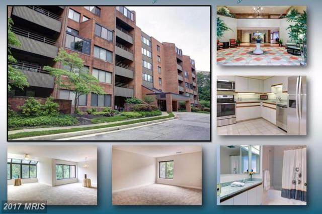 2 Southerly Court #605, Towson, MD 21286 (#BC9968592) :: LoCoMusings