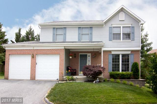 3 Romney Court, Owings Mills, MD 21117 (#BC9979503) :: LoCoMusings