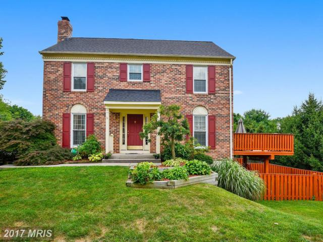 16 Preakness Court, Owings Mills, MD 21117 (#BC9994971) :: Pearson Smith Realty
