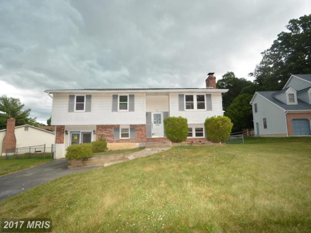5 Brucetown Court, Baltimore, MD 21228 (#BC9995000) :: Pearson Smith Realty
