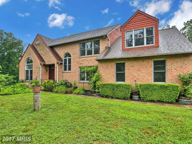 13 Brian Daniel Court, Reisterstown, MD 21136 (#BC9997938) :: Pearson Smith Realty