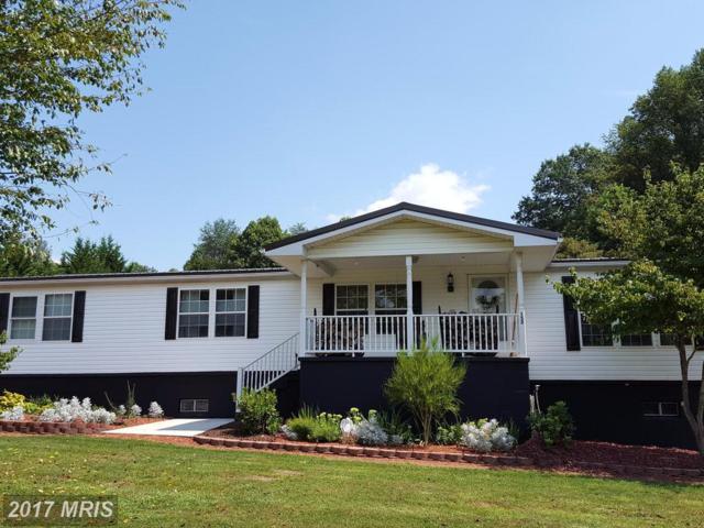 152 Brook Lane, Hyndman, PA 15545 (#BD10039525) :: Pearson Smith Realty
