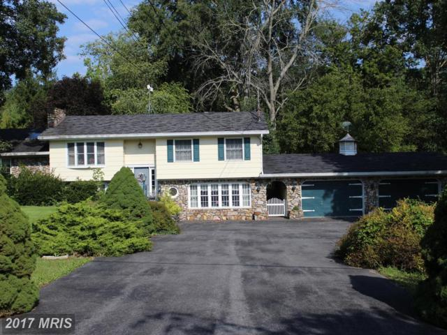 4917 Bedford Valley Road, Bedford, PA 15522 (#BD10045725) :: Pearson Smith Realty