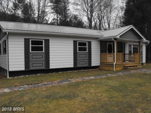 2652 Black Valley Road, Clearville, PA 15535 (#BD10160042) :: Century 21 New Millennium