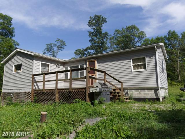 7100 Clear Ridge Road, Clearville, PA 15535 (#BD10304434) :: Bic DeCaro & Associates