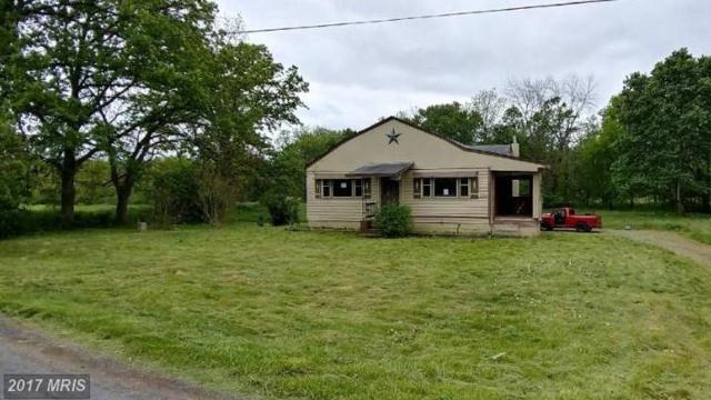 234 Hoagland Road, Bedford, PA 15522 (#BD9956676) :: LoCoMusings