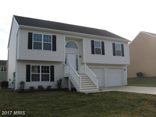 163 Melville Drive, Inwood, WV 25428 (#BE10012641) :: The Belt Team